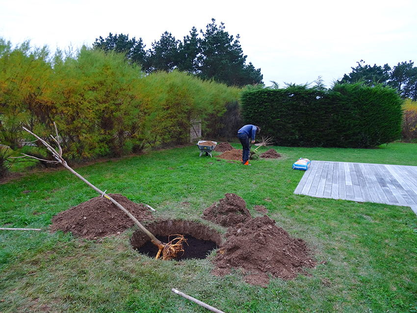 amenagement jardin 06