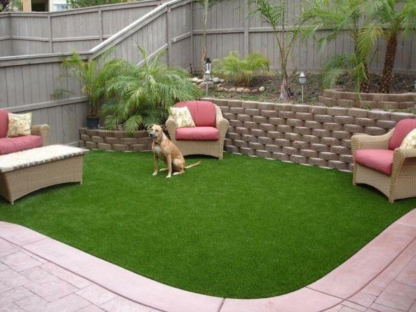 amenagement jardin avec chien