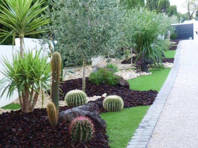 amenagement jardin cactus