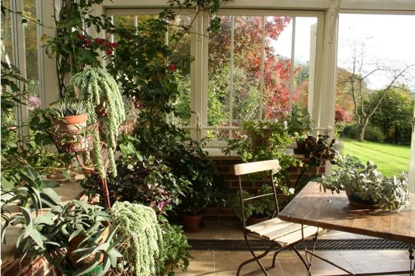 amenagement jardin d'hiver