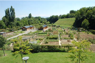 amenagement jardin familial