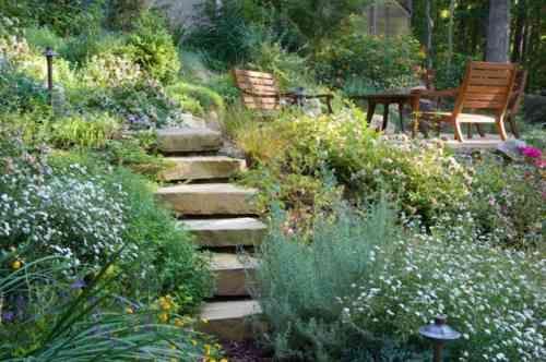 amenagement jardin foret