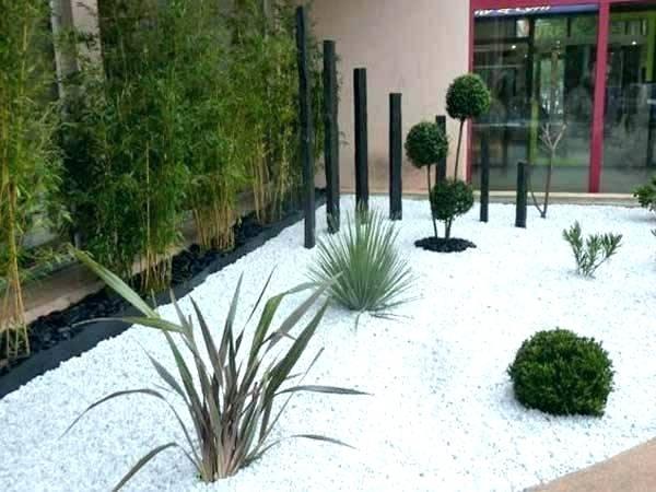 amenagement jardin galets blancs