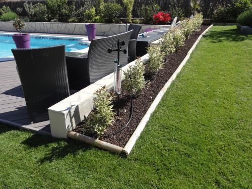 Amenagement jardin haie - Amenagement bord de piscine ...