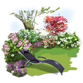 amenagement jardin hortensia