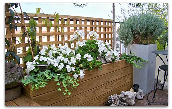 amenagement jardin lyon
