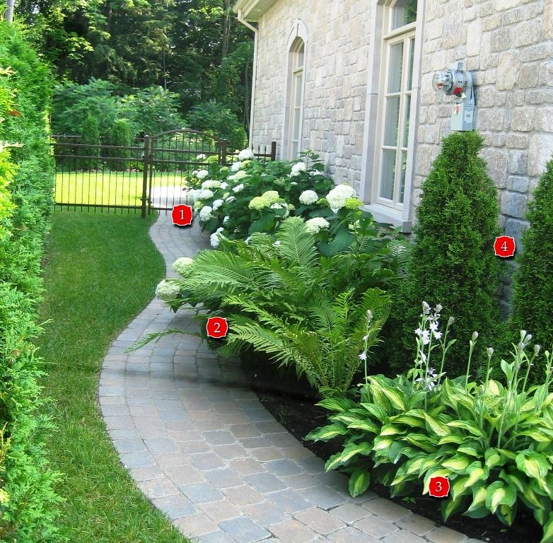 amenagement jardin mi ombre