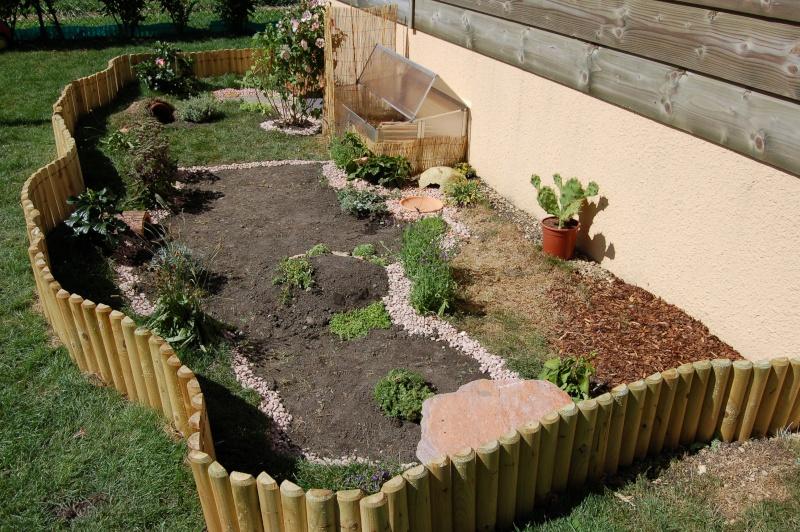 amenagement jardin pour tortue