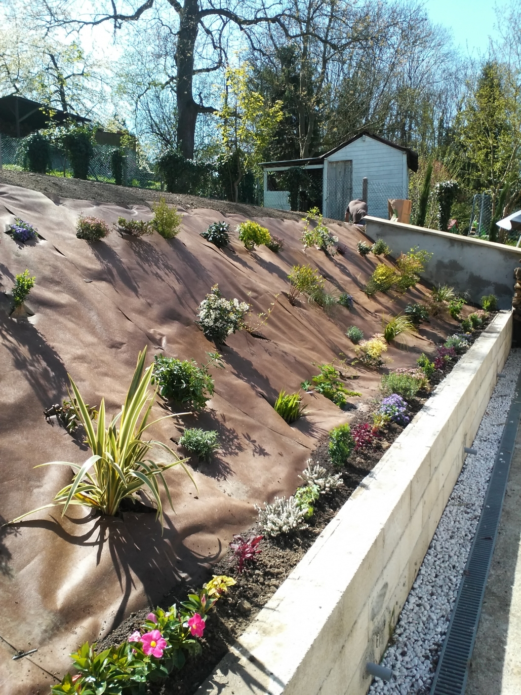 amenagement jardin talus