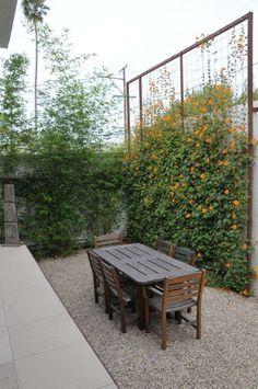 amenagement jardin treillis