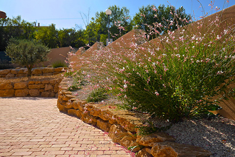 amenagement jardin vaucluse