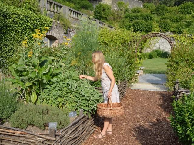 amenagement jardin villers la ville