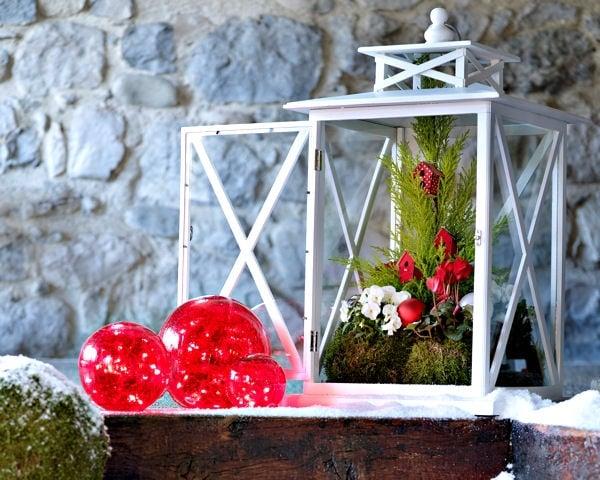 decoration exterieur botanic
