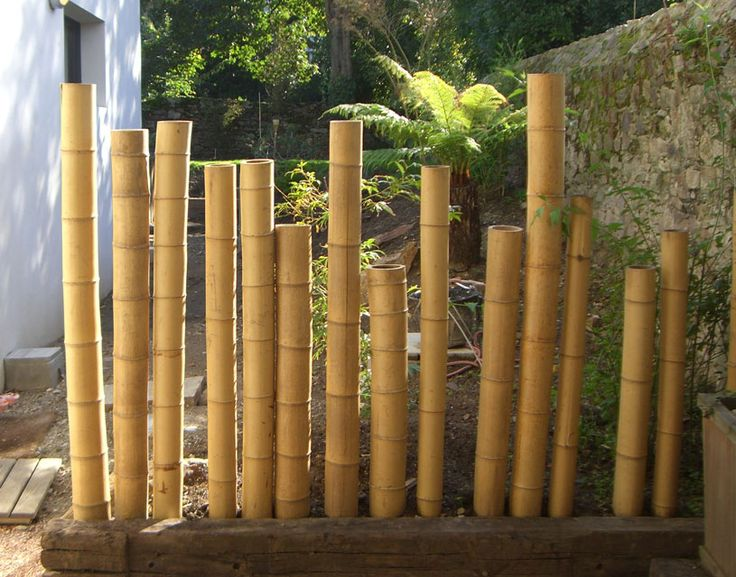 decoration exterieur en bambou