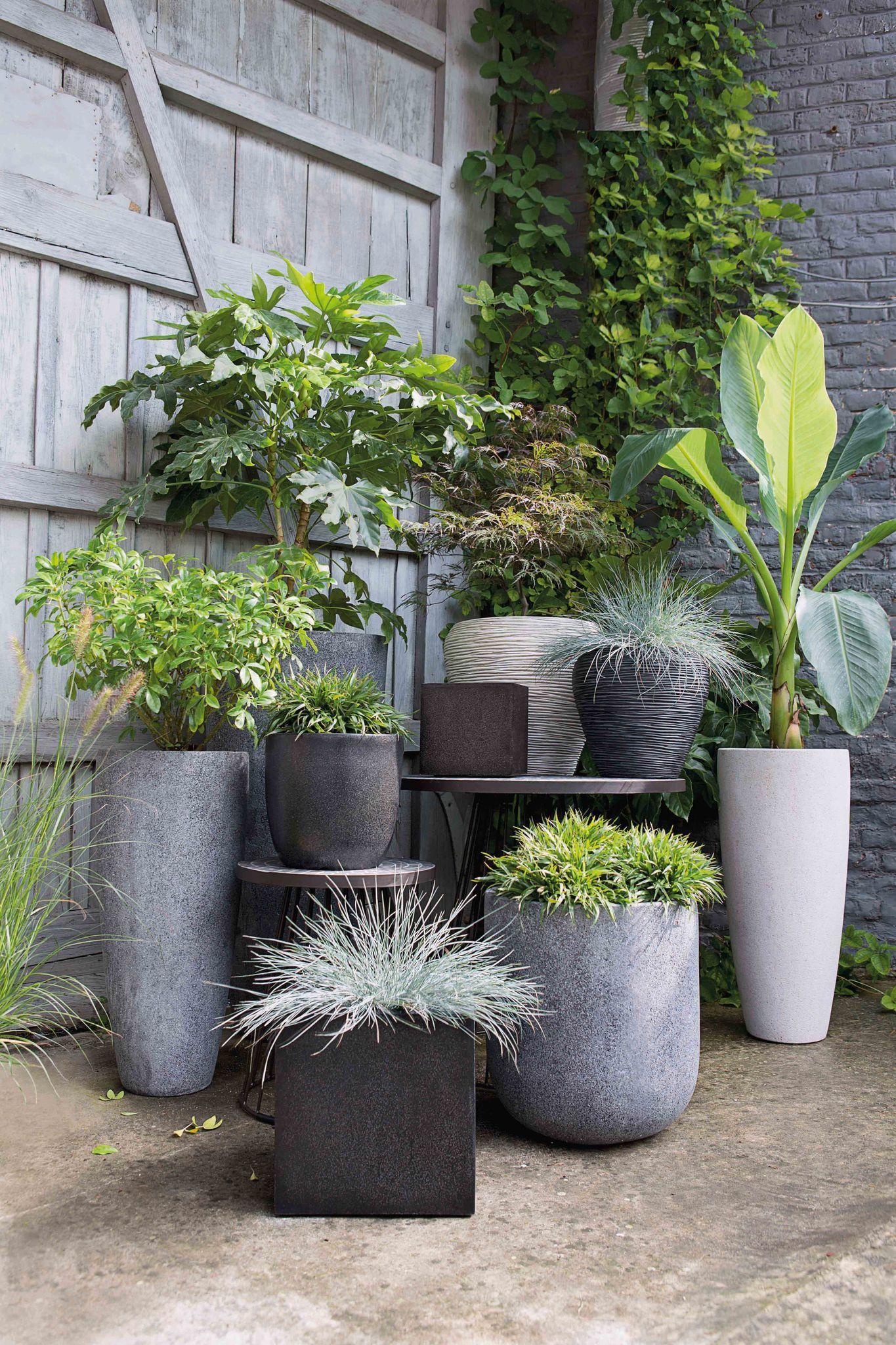 decoration exterieur jardin jardinieres pots