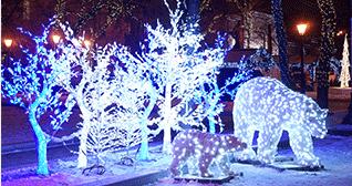 decoration exterieur lumineuse pour noel