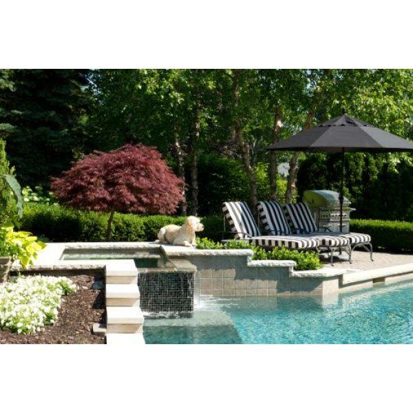 decoration jardin avec piscine