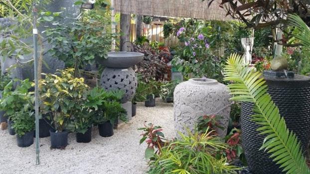 decoration jardin japonais belgique