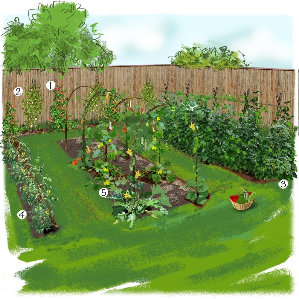 decoration jardin potager
