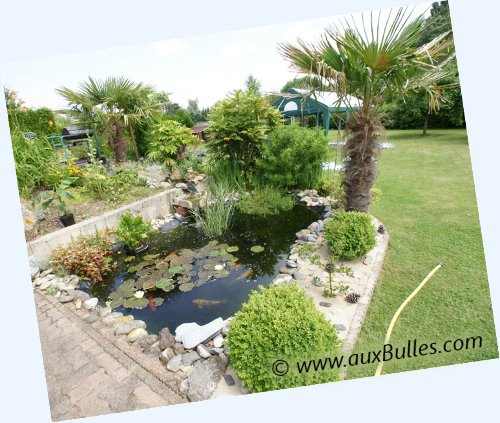 idee jardin avec petit bassin