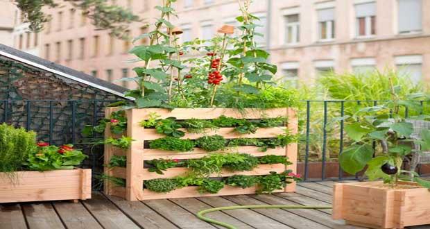 idee jardin balcon
