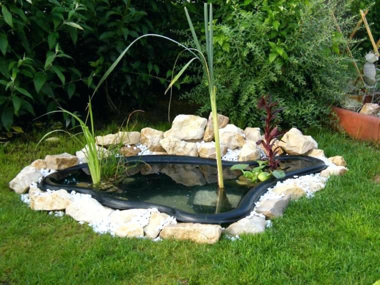 idee jardin bassin