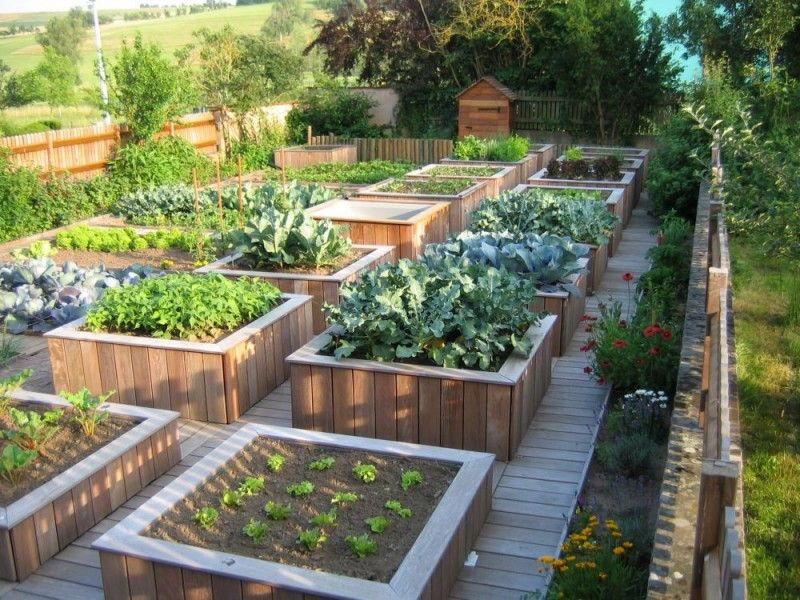 idee jardin bio
