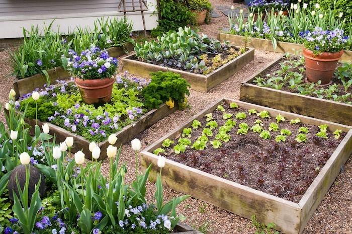 idee jardin carre
