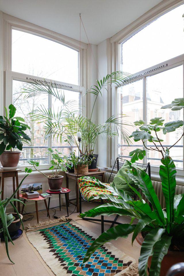 idee jardin d\'hiver