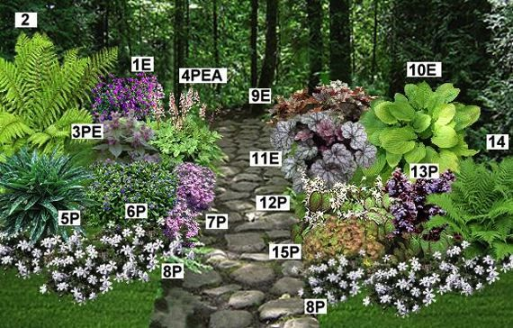 idee jardin d\'ombre