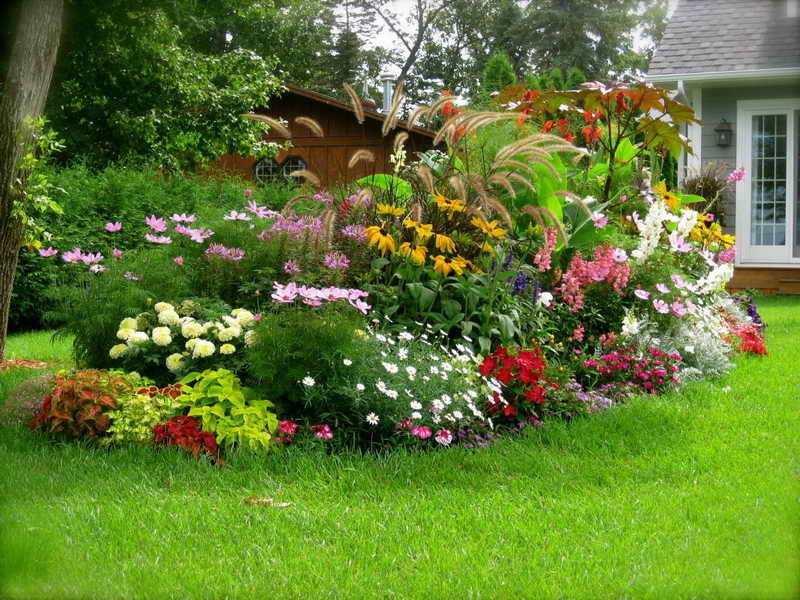 idee jardin d'ornement