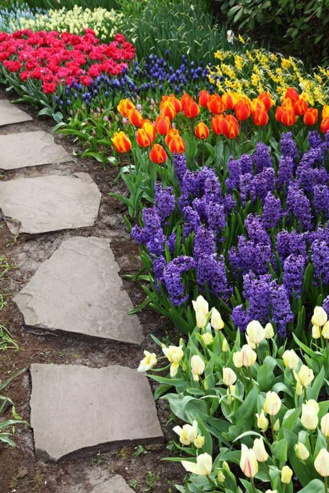idee jardin de fleurs