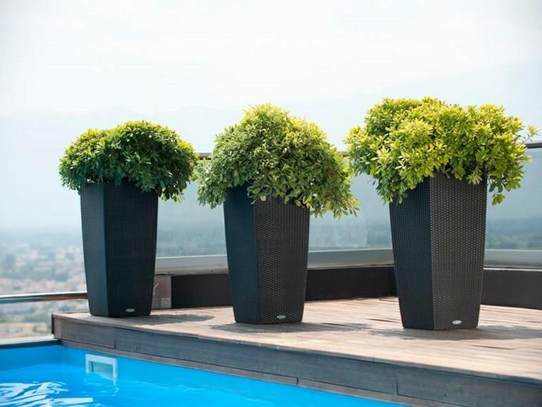 idee jardin en pot