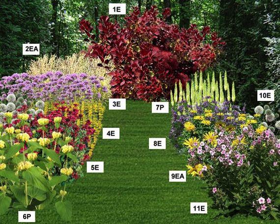 idee jardin fleuri toute l\'annee