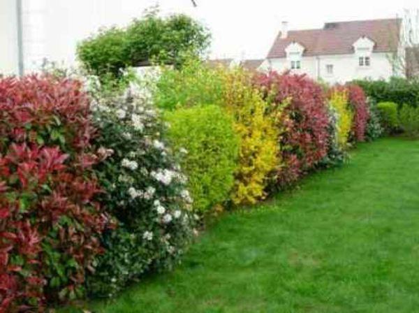 Awesome Un Beau Jardin Toute L Annee Images - House Design ...