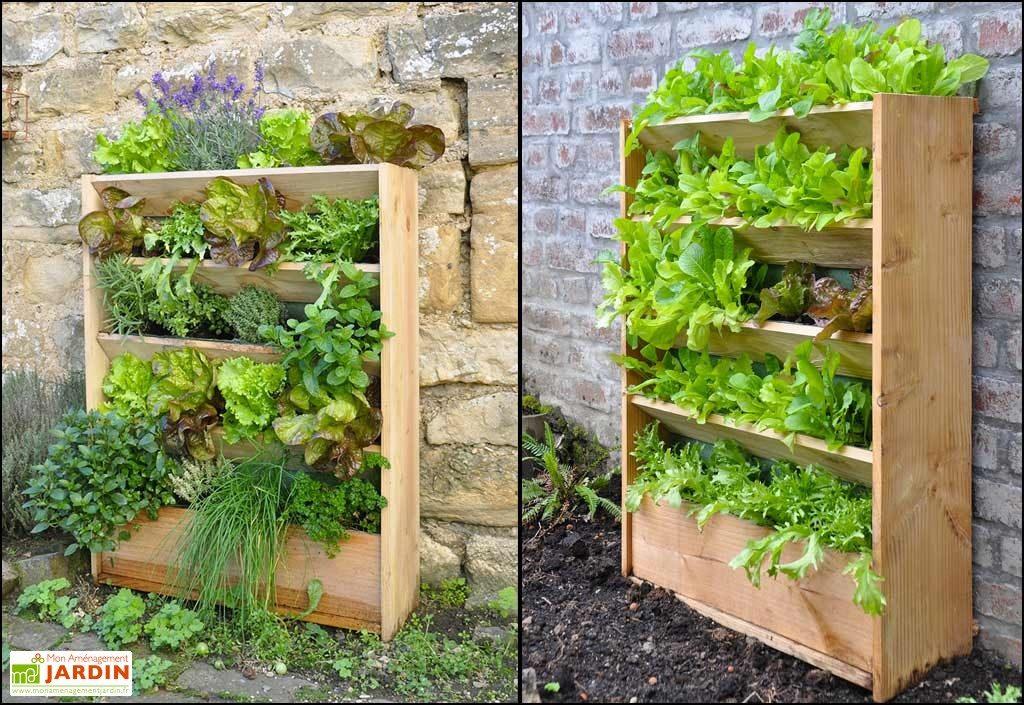idee jardin legumes