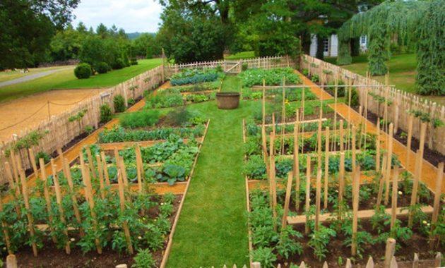 idee jardin potager