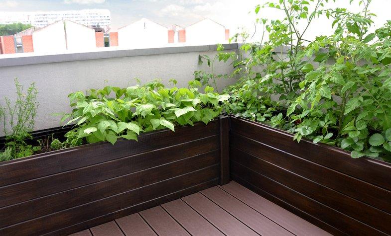 idee jardin sur balcon